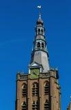 La cattedrale di St John, s-Hertogenbosch, Paesi Bassi Immagine Stock Libera da Diritti