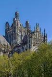 La cattedrale di St John, s-Hertogenbosch, Paesi Bassi Fotografie Stock Libere da Diritti