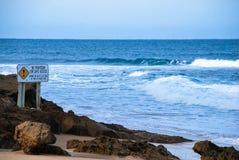 La cautela canta sulla spiaggia Immagini Stock Libere da Diritti