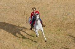 La cavalleria combatte, soldato sul cavallo bianco Fotografia Stock