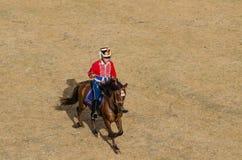 La cavalleria combatte, soldato sul cavallo marrone Fotografia Stock
