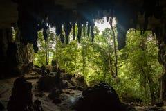 La caverna dipinta Niah interna, una del frana il parco nazionale di Niah, Borneo, Sarawak, Malesia immagini stock libere da diritti