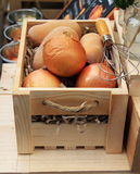 La cebolla fresca y bate Foto de archivo libre de regalías