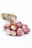 La cebolla roja, verduras, especias, condimenta el ingrediente alimentario popular de A Foto de archivo