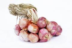 La cebolla roja, verduras, especias, condimenta el ingrediente alimentario popular de A Imagen de archivo libre de regalías