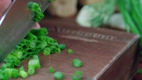 La cebolla verde cortó en una tajadera almacen de metraje de vídeo