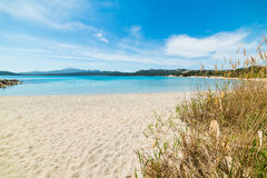 La Celvia beach on a sunny day Royalty Free Stock Images