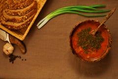 La cena de Vegeterian contiene de la sopa, del pan, de la cebolla fresca y del garli Fotos de archivo