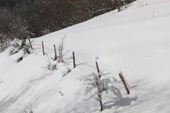 La cerca blanca Imagen de archivo libre de regalías