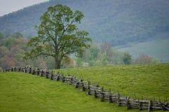 La cerca de carril partido cruza un pasto verde de la montaña. foto de archivo