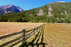 La cerca de madera Foto de archivo