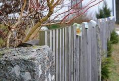 La cerca de madera tradicional adornó las tazas, Bohemia del sur Imagenes de archivo
