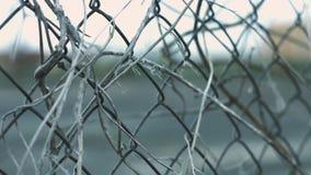 La cerca de la malla de alambre con la planta seca proviene la mudanza encendido del viento en área cercada fondo metrajes