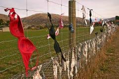 La cerca del sujetador Foto de archivo libre de regalías