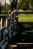 La cerca en la cual siente dos cuervos Foto de archivo