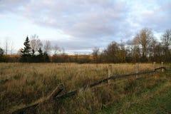 La cerca raquítica vieja en un campo del otoño Imagen de archivo