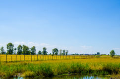 La cerca a través de las tierras de labrantío Imagen de archivo libre de regalías
