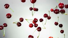 La cereza hermosa/las cerezas rojas frescas, maduras, jugosas vuela, gira en el aire y cae