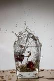 La cerise tombe avec une éclaboussure dans l'eau Photo libre de droits
