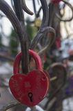 La cerradura en un árbol del amor para Fotos de archivo libres de regalías