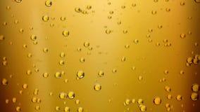 La cerveza burbujea (el lazo inconsútil)