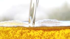 La cerveza de oro está vertiendo en las burbujas y la espuma de vidriero almacen de video
