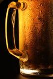 La cerveza fría Imagen de archivo libre de regalías