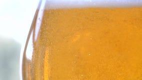 La cerveza fresca de oro está vertiendo formando ondas y burbujas almacen de video