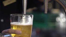 La cerveza se vierte en un vidrio almacen de metraje de vídeo