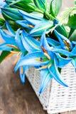 La cesta blanca con el lirio azul florece el ramo en TA de madera rústica Fotografía de archivo libre de regalías
