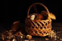 La cesta con el bosque prolifera rápidamente en un fondo de madera Fotografía de archivo libre de regalías