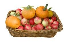 La cesta con manzanas y una calabaza Fotos de archivo libres de regalías