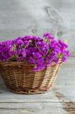 La cesta con un ramo de statice secado florece Foto de archivo