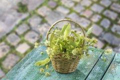 La cesta de mimbre con el tilo florece en la tabla de madera verde en un guijarro viejo con el fondo del verdor fotografía de archivo libre de regalías