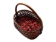 La cesta de mimbre con las bayas rojas de salvaje subió Fotos de archivo libres de regalías