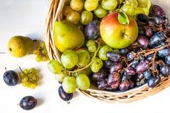 La cesta grande con las frutas del otoño Fotos de archivo