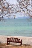 La chaise avec l'arbre par l'océan Photos stock