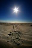 La chaleur dans les dunes de désert images libres de droits