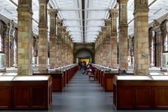 La chambre forte, affichage minéral, dans le musée d'histoire naturelle dans Lon Image libre de droits
