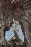 La chambre forte du temple avec l'arbre photographie stock libre de droits