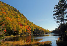 La charca perdida en New Hampshire, los E.E.U.U. Imagenes de archivo