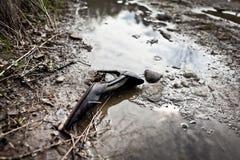 La chaussure de Cendrillon Images libres de droits