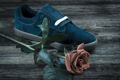 La chaussure de l'homme bleu-foncé et s'est levée Photographie stock libre de droits