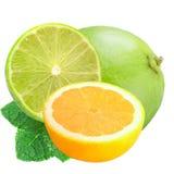 La chaux entière et le citron et la chaux coupés en tranches avec la menthe iisolated sur le petit morceau Photo stock
