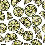 La chaux sans couture découpe le fond en tranches Modèle d'agrume Illustration de vecteur de style de griffonnage Photos stock