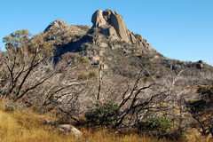 La chepa - búfalo del Mt Foto de archivo