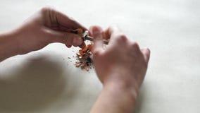 La chica joven afila el lápiz con sacapuntas de lápiz del metal almacen de video