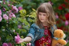 La chica joven con el oso de peluche en el jardín de salvaje subió Fotos de archivo