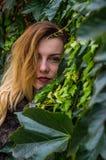 La chica joven con el pelo largo que se coloca cerca de la pared con las uvas salvajes deja día soleado del otoño Foto de archivo libre de regalías