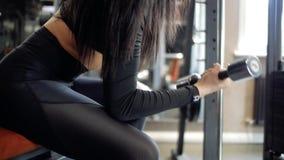 la chica joven en polainas y top negros realiza los ejercicios para los bíceps, sentándose en un banco y pesas de gimnasia de ele almacen de metraje de vídeo